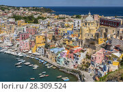 Купить «Morning light over Marina della Corricella, fishermen's village on the island of Procida near Naples, Italy», фото № 28309524, снято 18 августа 2019 г. (c) BE&W Photo / Фотобанк Лори