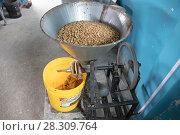 Купить «Peanut butter mill, Ecuador, February 2017.», фото № 28309764, снято 19 июня 2018 г. (c) Nature Picture Library / Фотобанк Лори