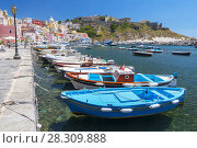 Купить «Marina Corricella with colourful boats and houses, Terra Murata, Procida Island, Bay of Naples, Italy», фото № 28309888, снято 3 июля 2020 г. (c) BE&W Photo / Фотобанк Лори