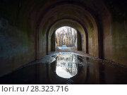 Купить «Old road with puddles under the arch», фото № 28323716, снято 12 апреля 2018 г. (c) Алексей Маринченко / Фотобанк Лори