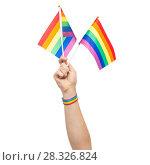 Купить «hand with gay pride rainbow flags and wristband», фото № 28326824, снято 2 ноября 2017 г. (c) Syda Productions / Фотобанк Лори