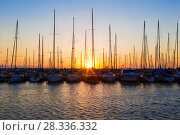 Купить «Yachts at the pier at sunset, the Mediterranean sea, Israel», фото № 28336332, снято 14 октября 2017 г. (c) Наталья Волкова / Фотобанк Лори