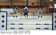 Купить «Young female rider on sorrel stallion jumping over hurdle on show jumping competition», фото № 28337972, снято 24 апреля 2018 г. (c) Константин Шишкин / Фотобанк Лори