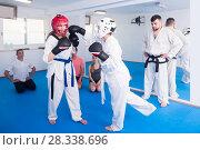 Trainees receive a punch technique in sparring. Стоковое фото, фотограф Яков Филимонов / Фотобанк Лори