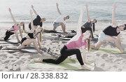 Купить «Sporty people practicing yoga on beach», фото № 28338832, снято 14 июня 2017 г. (c) Яков Филимонов / Фотобанк Лори