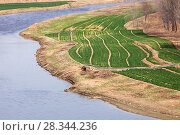 Купить «Aerial view of wheat crop irrigation during severe drought, Hangang, Northern China. March 2009.», фото № 28344236, снято 17 августа 2018 г. (c) Nature Picture Library / Фотобанк Лори