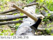 Купить «Топор в бревне», фото № 28346316, снято 18 мая 2014 г. (c) Ольга Сейфутдинова / Фотобанк Лори