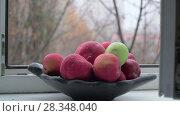 Купить «Bowl with apples and late autumn outside the window», видеоролик № 28348040, снято 22 мая 2019 г. (c) Данил Руденко / Фотобанк Лори