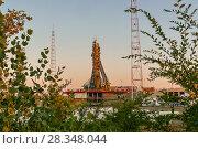 Spacecraft preparation for launch, Baikonur, Kazakhstan (2015 год). Стоковое фото, фотограф Игорь Овсянников / Фотобанк Лори