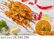 Купить «Chicken satay on a rectangular plate», фото № 28349356, снято 18 апреля 2018 г. (c) Oksana Zh / Фотобанк Лори