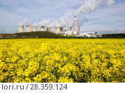 Купить «Ratcliffe on Soar, a massive coal powered power station in Nottinghamshire, with field of oilseed rap in foreground, UK, May 2008.», фото № 28359124, снято 17 августа 2018 г. (c) Nature Picture Library / Фотобанк Лори