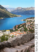 Купить «Montenegro. A beautiful view of the blue waters of Kotor Bay, the coastal city of Kotor and the Old Town road with a medieval stone stairs to the Fort of St. Ivan», фото № 28361872, снято 8 октября 2016 г. (c) Виктория Катьянова / Фотобанк Лори