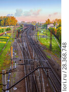 Landscape with a view of the interwoven branches of the railway. Стоковое фото, фотограф Николай Лемешев / Фотобанк Лори