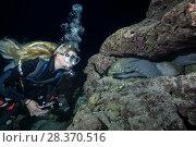 Купить «Female scuba diver looks at group of moray eels in the night. Yellow-edged moray or Speckled moray (Gymnothorax flavimarginatus)», фото № 28370516, снято 30 марта 2018 г. (c) Некрасов Андрей / Фотобанк Лори