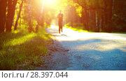 Купить «Sport man running at asphalt road. Rural city park. Green tree forest and sun rays on horizon.», видеоролик № 28397044, снято 16 апреля 2018 г. (c) Александр Маркин / Фотобанк Лори