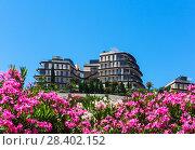 Купить «Здание отеля среди цветов на фоне голубого неба. Черногория», фото № 28402152, снято 27 июня 2017 г. (c) Светлана Кузнецова / Фотобанк Лори