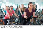 Купить «Females cycling in sport club», фото № 28402488, снято 20 июля 2018 г. (c) Яков Филимонов / Фотобанк Лори
