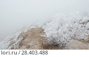 Купить «Movement on a stony mountain slope. The rocks and grass are covered with hoarfrost.», видеоролик № 28403488, снято 27 марта 2018 г. (c) Андрей Радченко / Фотобанк Лори