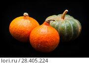 Купить «Colorful pumpkin and squash, Red Kuri, Kabocha,», фото № 28405224, снято 19 октября 2017 г. (c) Сурикова Ирина / Фотобанк Лори