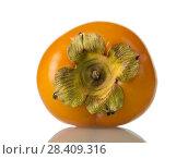 Купить «Persimmon fruit is depicted close-up, isolated on white», фото № 28409316, снято 20 декабря 2017 г. (c) Сергей Молодиков / Фотобанк Лори