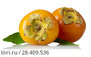 Купить «Two ripe tropical persimmon fruits, with leaves isolated on white», фото № 28409536, снято 20 декабря 2017 г. (c) Сергей Молодиков / Фотобанк Лори