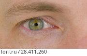 Купить «close up of male eye with green iris», видеоролик № 28411260, снято 12 мая 2018 г. (c) Syda Productions / Фотобанк Лори