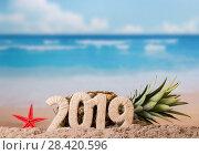 Купить «Starfish, symbol of 2019, behind it lies pineapple, on sea coast», фото № 28420596, снято 22 декабря 2017 г. (c) Сергей Молодиков / Фотобанк Лори