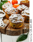 Купить «Mandarin muffins with raisin», фото № 28441480, снято 7 января 2018 г. (c) Надежда Мишкова / Фотобанк Лори