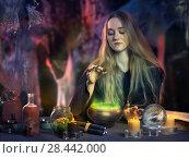 Купить «The work of the witch», фото № 28442000, снято 16 октября 2018 г. (c) Ирина Козорог / Фотобанк Лори