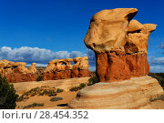 Купить «Rock formation caused by erosion in sandstone, Devils Garden, Grand Staircase-Escalante National Monument, Utah, USA, March 2014.», фото № 28454352, снято 20 июля 2018 г. (c) Nature Picture Library / Фотобанк Лори