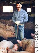 Купить «Mature farmer in hangar with hogs», фото № 28460180, снято 16 октября 2018 г. (c) Яков Филимонов / Фотобанк Лори