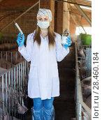 Купить «Woman wearing protective clothing in sty», фото № 28460184, снято 16 октября 2018 г. (c) Яков Филимонов / Фотобанк Лори