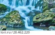 Купить «Mountain forest stream», видеоролик № 28462220, снято 25 марта 2018 г. (c) BestPhotoStudio / Фотобанк Лори