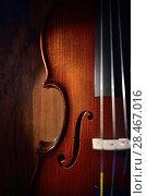 Купить «Violin on dark background», фото № 28467016, снято 26 мая 2018 г. (c) Знаменский Олег / Фотобанк Лори