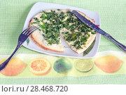 Купить «Утренний завтрак, омлет с зеленью укропа и петрушки», эксклюзивное фото № 28468720, снято 23 июля 2018 г. (c) Svet / Фотобанк Лори