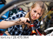 Купить «Woman is fixing wheel of bicycle in bicycle service», фото № 28470964, снято 13 сентября 2017 г. (c) Яков Филимонов / Фотобанк Лори