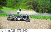 Купить «The motorcycle lies on the roadside, in the background the driver rides, slow-motion», видеоролик № 28475340, снято 20 сентября 2018 г. (c) Константин Шишкин / Фотобанк Лори