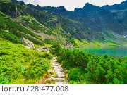 Купить «a path around a picturesque clean lake in the Tatra Mountains, Poland», фото № 28477008, снято 18 августа 2017 г. (c) Константин Лабунский / Фотобанк Лори