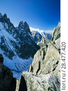 Купить «The Dru from the Grand Montets above Chamonix, France, September 2007.», фото № 28477420, снято 20 июня 2019 г. (c) Nature Picture Library / Фотобанк Лори