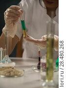 Купить «Unrecognizable science professional working with the glass cuvette», фото № 28480268, снято 16 мая 2014 г. (c) Ingram Publishing / Фотобанк Лори