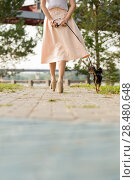 Купить «Unrecognizable lady walking with her dog on lead in summer park. View from behind», фото № 28480648, снято 19 июля 2014 г. (c) Ingram Publishing / Фотобанк Лори