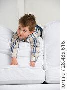 Купить «Cute little boy playing at home on sofa», фото № 28485616, снято 31 марта 2013 г. (c) Ingram Publishing / Фотобанк Лори