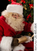 Portrait of happy Santa Claus sitting at his room at home near Christmas tree and big sack and reading Christmas letter or wish list. Стоковое фото, фотограф Kirill Kedrinskiy / Ingram Publishing / Фотобанк Лори