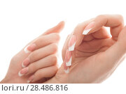 Купить «Portrait of a pair of hands. Isolated white background.», фото № 28486816, снято 11 апреля 2011 г. (c) Ingram Publishing / Фотобанк Лори
