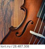 Купить «Violin on wooden background», фото № 28487308, снято 26 мая 2018 г. (c) Знаменский Олег / Фотобанк Лори