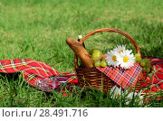 Купить «Picnic basket with red napkin fool of fruits, bread and wine», фото № 28491716, снято 30 июня 2012 г. (c) Ingram Publishing / Фотобанк Лори