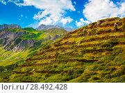 Купить «Alps mountains with avalanche defense grids», фото № 28492428, снято 8 декабря 2019 г. (c) Ingram Publishing / Фотобанк Лори