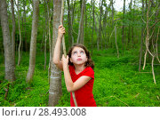 Купить «Happy kid girl playing in forest park jungle with liana looking up», фото № 28493008, снято 21 апреля 2019 г. (c) Ingram Publishing / Фотобанк Лори