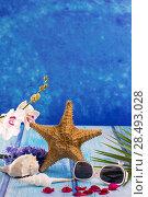 Купить «Starfish seashells with hyacinth flower and white orchid on blue wood  background», фото № 28493028, снято 27 марта 2019 г. (c) Ingram Publishing / Фотобанк Лори