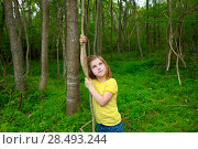 Купить «Happy kid girl playing in forest park jungle with liana looking up», фото № 28493244, снято 21 апреля 2019 г. (c) Ingram Publishing / Фотобанк Лори